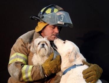 Fireman dogs
